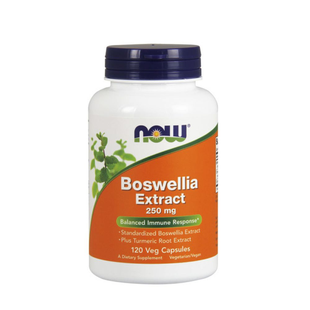 Boswellia Extract 500mg 90 Softgels, NOW Foods