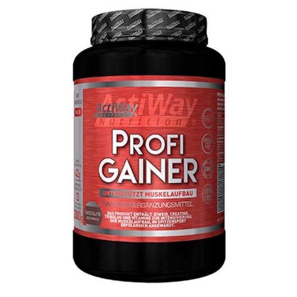 Profi Gainer 2kg, ActiWay