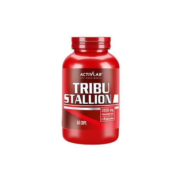 Tribu Stallion 60caps, ActivLab