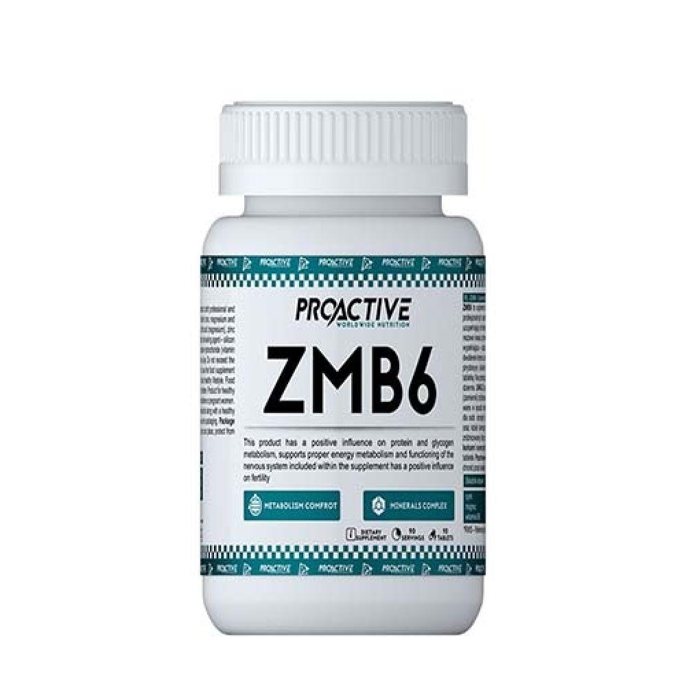 ZMB6 90tab, ProActive