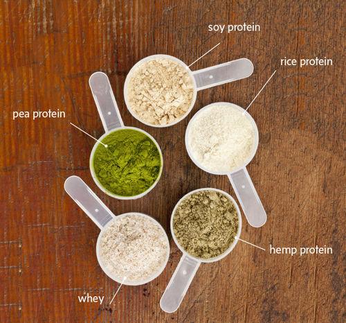 виды протеина